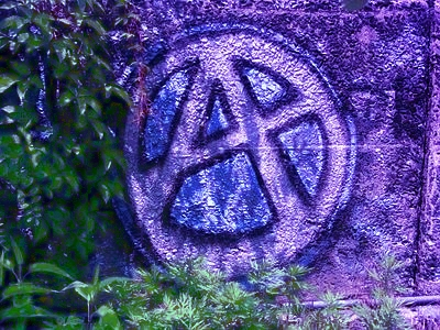 anarchia_graffito_web--400x300