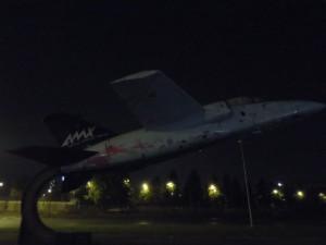 AMX rosa 1